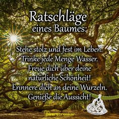 Advice from a tree: Stand proud and firm in life. Drink lots of water. Enjoy your natural beauty! Informations About Ratschläge eines Baumes: Stehe … Anger Management For Kids, Anger Management Activities, Parenting Teens, Coping Skills, Deep Thoughts, Life Is Good, About Me Blog, Inspirational Quotes, Advice