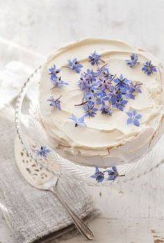 Pavlova with pretty blue edible flowers Pretty Cakes, Cute Cakes, Beautiful Cakes, Amazing Cakes, Pavlova, Cake Cookies, Cupcake Cakes, Kreative Desserts, Bolo Cake