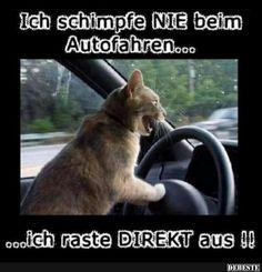 Ich schimpfe nie beim Autofahren.. | Lustige Bilder, Sprüche, Witze, echt lustig