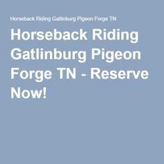 Horseback Riding Gatlinburg Pigeon Forge TN - Reserve Now!