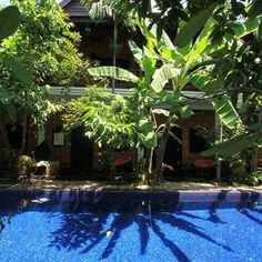 Insider deals are waiting so grab them now! While u are heading to explore Angkor in Siem Reap , CAMBODIA   www.petitvilla.com - booking@petitvilla.com +855 888 575 389