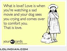 only dogs can truly love someone - LOL Indian - Funny Indian Pics and images