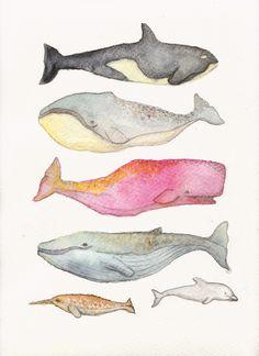 Ballenas, por Rubí Zeiler
