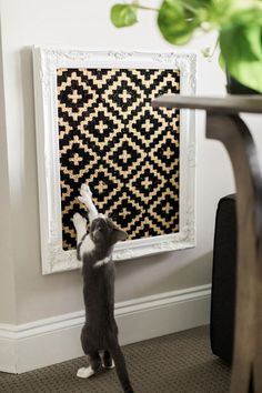 Easy DIYs for Cats and Cat Lovers You'll love making these cute feline-friendly DIY projects almost as much as you love your cat. You'll love making these cute feline-friendly DIY projects almost as much as you love your cat. Creation Deco, Cat Room, Cat Furniture, Cat Scratch Furniture, Woodworking Furniture, Furniture Plans, Furniture Makeover, Diy Stuffed Animals, Crazy Cats