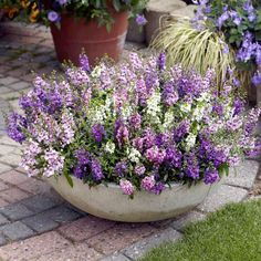 Garden Design: Garden Design with Hanging baskets on Pinterest ... #containergardeningideashangingbaskets