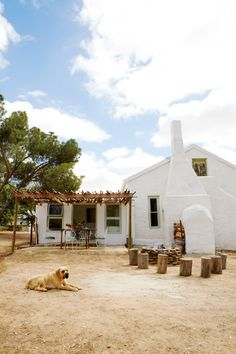 Farm guard dog Cape Dutch, Strip Mall, Guard Dog, Small Farm, Farm Animals, Cottages, Homesteading, Beach House, Restoration