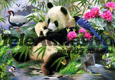 Fototapeten Panda-Bär