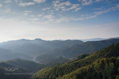 Fresh morning in Slovenia by dornikt  mist trees sky landscape sunrise fog morning forest nature travel light clouds europe tree wood moun