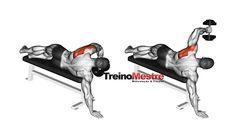 ordem correta exercícios treino musculação