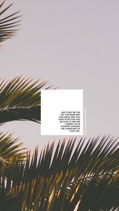 new ideas quotes small words thoughts Flowers Quotes Tumblr, Flower Quotes Love, Love Wallpaper, Wallpaper Quotes, Iphone Wallpaper, White Wallpaper, New Quotes, Inspirational Quotes, Motivational