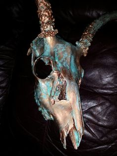 Aged Copper Mule Deer skull