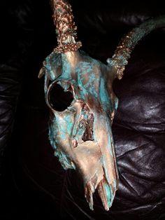 Aged Copper Mule Deer skull