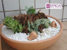 Resultado de imagem para jardim de suculentas em vasos