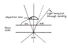 Light passes in a straight line from glass to oil, but bends from glass to air