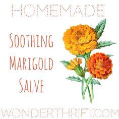From Lucy at Wonderthrift: Thrifty Beauty: DIY Soothing Marigold/ Calendula Salve Homemade Beauty, Diy Beauty, Homemade Soaps, Beauty Ideas, Natural Skin Care, Natural Health, Salve Recipes, Beauty Recipe, Calendula