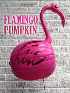 Halloween is right a round the corner & it's pumpkin carving time. Check out my Pink Flamingo Pumpkin that I created with the Sonicrafter Get carving! Pink Halloween, Holidays Halloween, Halloween Pumpkins, Halloween Crafts, Holiday Crafts, Holiday Fun, Halloween Ideas, Holiday Ideas, Preschool Halloween