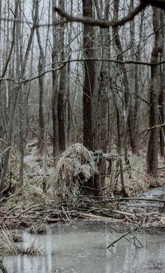 Versions Share ©by: █║Rhèñdý Hösttâ║█ Thank you for visiting my … Le Sniper, Sniper Gear, Airsoft Gear, Tactical Gear, Sniper Camouflage, Ghillie Suit, Military Special Forces, Fire Powers, Military Pictures