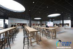 В Венском экономическом университете огромное количество мест для самостоятельных занятий, много комнат для работ над групповыми проектами, по всему зданию расставлены принтеры, сканеры, кофемашины, шикарная столовая и много разных кафе. На территории есть даже продуктовый магазин!
