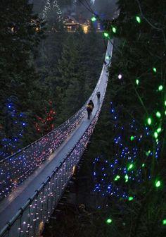 Capilano Suspension Bridge,British Columbia, Canada | See More