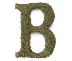 To add a nice touch to your home or wedding decor, take a look at these unique moss monogram letters. They are so enchanting and lovely that they make perfect gifts to place on a door, wall or mantle.