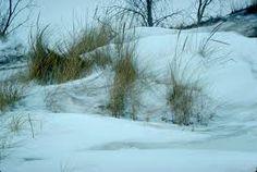 Winter on beach