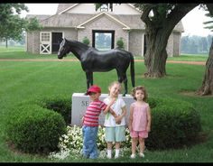 Cousins Horse Farm Tourists