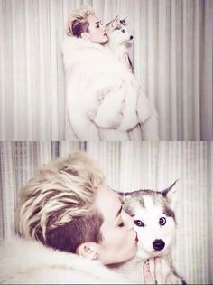 Miley Cyrus' adorable dog Floyd is an Alaskan Klee Kai