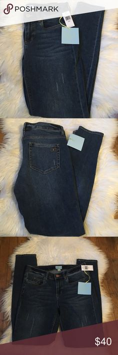 CeCe by Cynthia Steffe distressed jeans. Size 28/6 New With Tags. CeCe By Cynthia Steffe distressed jeans. Size 28/6. Indigo wash color. Skinny leg. Approximately 30 inch inseam and 39 inch in length. Cynthia Steffe Jeans Skinny