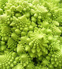 Crazy acid inducing Broccoli #wtf #vegetable