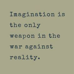 """Imagination is the only war against reality."""