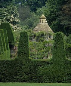 A stone dovecote (?) and some rather wonderful topiary in the foreground.