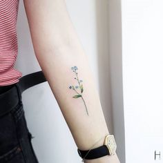 Me not tattoo on the left inner forearm tattoos shoulder tattoos for women, Trendy Tattoos, Cute Tattoos, Beautiful Tattoos, Small Tattoos, Mini Tattoos, Inner Forearm Tattoo, Forearm Tattoos, Body Art Tattoos, Blue Flower Tattoos