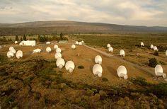 The SETI Allen Telescope Array site