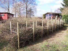 Landleben & Literatur: Eine Benjeshecke für den Garten
