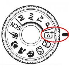 Besser fotografieren im Automatikmodus - Tipps für Fotografie-Anfänger! - Fototraum.land