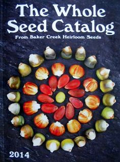 Oh Happy Day...My favorite seed catalog arrived in the mail this week. Hooray!!! Over 350 pages of amazing heirloom seeds.