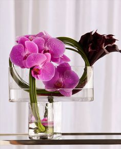Simple and elegant orchid arrangement! We can't get enough! Floral by Bella Flora of Dallas #bflive www.bellafloraofdallas.com