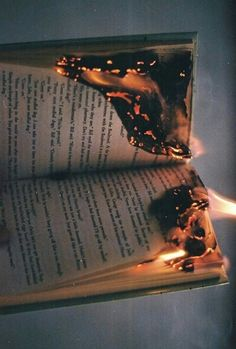 "Paper to a flame by Saving Annabel Lee. ""was I really so fucking easy to throw away! To turn back and look me in the fucking eyes! You took me, you loved me, you lied and I cried! Lying here, consumed by fear, scared by my own fucking mind! Burn burn! Like a fucking page! Burn burn! It's the end of my days! I'll see you hurt hurt! You lying bitch! I hope you these dying words you traitor you snitch!"""