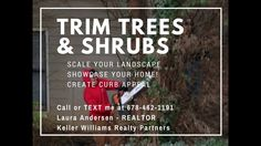 Key Steps to Selling Your Property by Laura Andersen - Trees and Shrubs