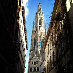 City tour in Antwerp.