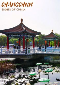 Changchun is the beautiful capital of the Jilin province. Come see the best photos of Changchun and discover this amazing city in this beautiful Changchun travel guide. China Travel, China Trip, Changchun, Big Country, Come And See, Luxury Travel, Great Photos, Travel Guide, Travel Inspiration