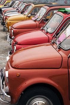 A lot of Fiat 500's - I love this!