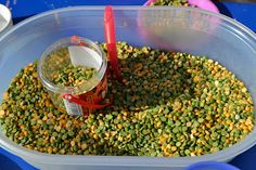 Split Pea Sensory: Perfect for St. Patrick's Day and Spring!  -  Pinned by @PediaStaff – Please Visit http://ht.ly/63sNt for all our pediatric therapy pins
