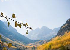 meghan brosnan photography I autumn