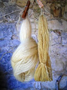 yarn dyed with Dyer's chamomile | Flickr - Photo Sharing!