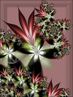 Bromeliads by kayandjay100 on DeviantArt