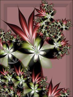 """""""Bromeliads"""""""