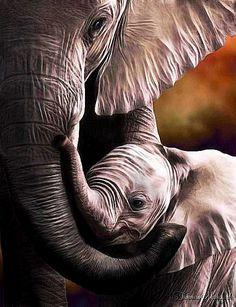 ❤ Mama and Baby Elephant