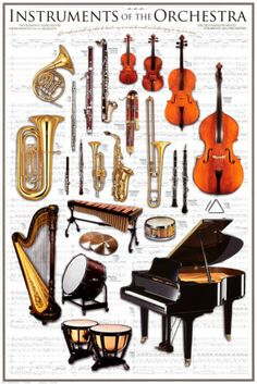 Use this Instruments of the Orchestra poster in your home or classroom to introduce the child to the vocabulary of music. Children love learning new words, and they may want to know more about the instruments after learning their names. Instruments Of The Orchestra, Musical Instruments, Music Rock, Reggae Music, Indie Music, Music Theory, Teaching Music, Music Lessons, Guitar Lessons