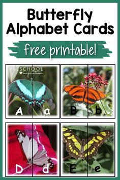 Snag this FREE printable for butterfly alphabet cards! Match up the two halves of the butterfly to match the uppercase letter with the lowercase. Perfect for a spring or summer alphabet, literacy, or science lesson! Preschool Alphabet, Alphabet Cards, Preschool Literacy, Alphabet Activities, Reading Activities, Literacy Activities, Activities For Kids, Butterfly Photos, Butterfly Crafts